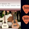 Bruna Viola Universal Music Brasil / Milke.us